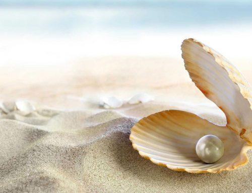 Pearl Season